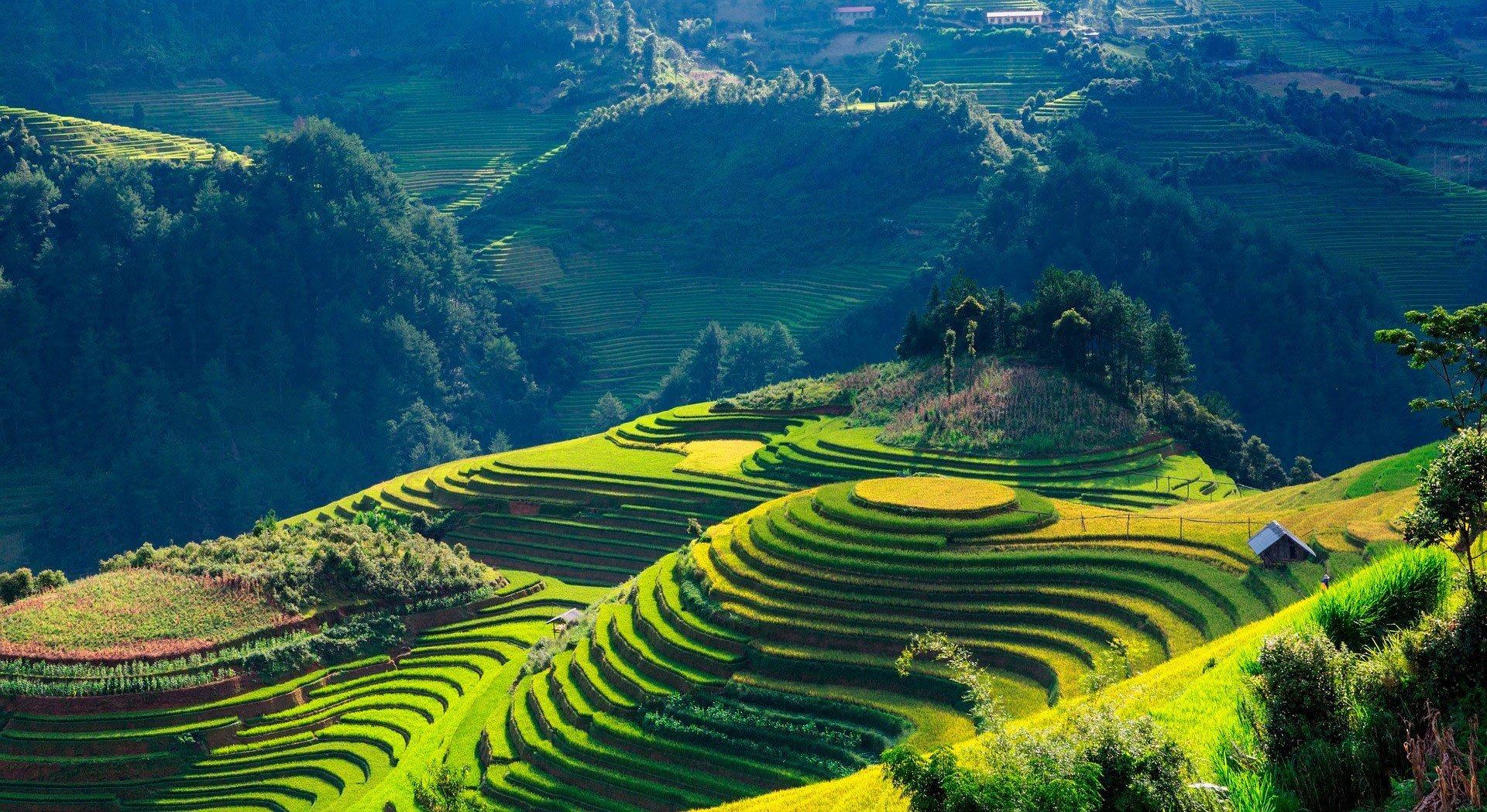 Autenticamente Vietnam