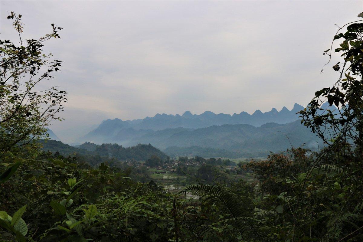 Paesaggio del Nord Vietnam